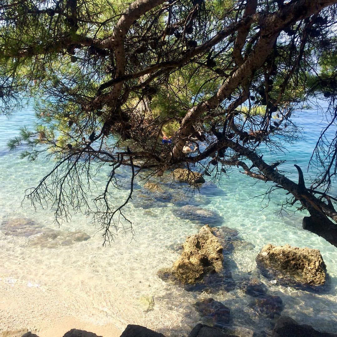 пляж Брелы