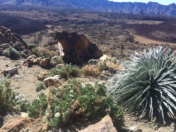 Вулкан Тейде Teide