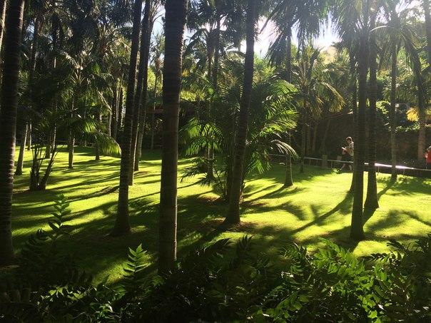 Лоро парк Loro Park, Tenerife