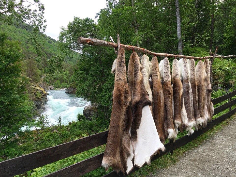 автопутешествие по Норвегии, Norway