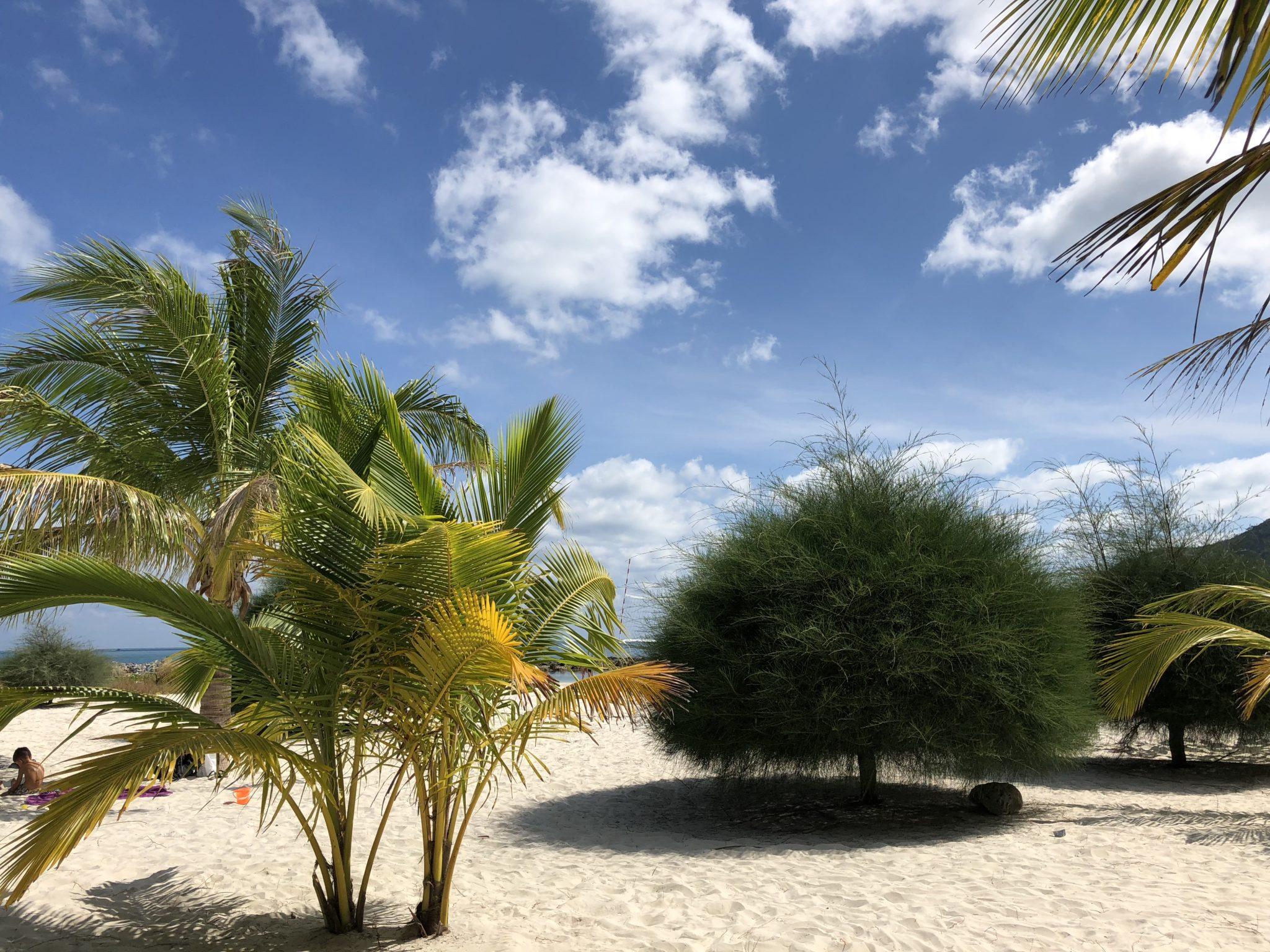 пляж Малибу, Панган
