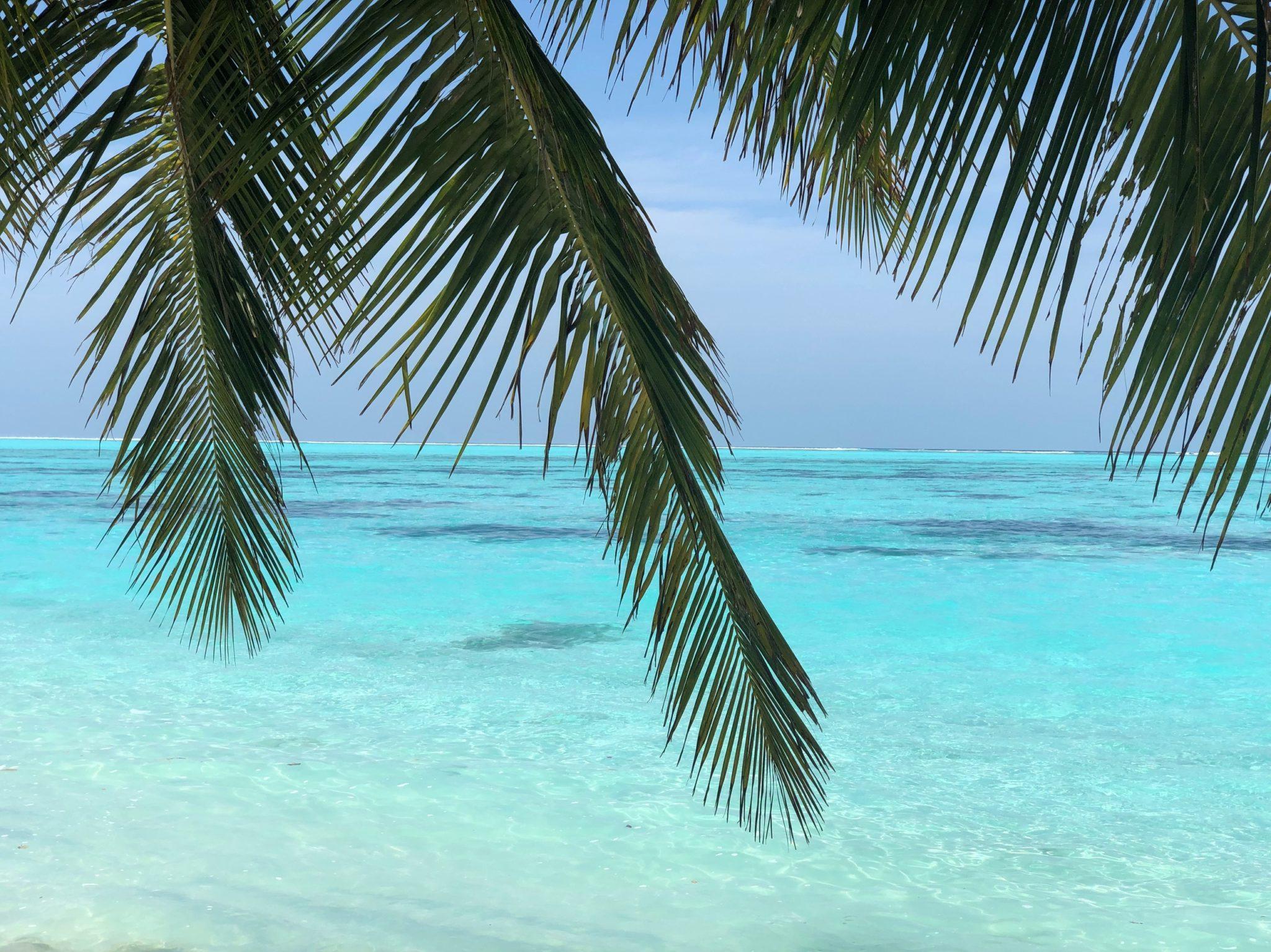 лучший отель на Мальдивах, Sun island resort and spa